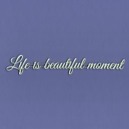 Life is beautiful moment