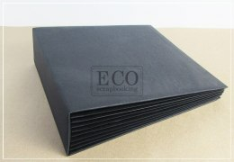 17x25 cm Hidden hinge album,black, 6 cards
