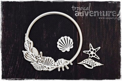 Tropical Adventure - Frame with seashells