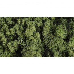 Decorative Moss DARK GREEN