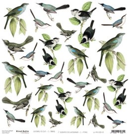 BIRDS - a sheet of extras to cut