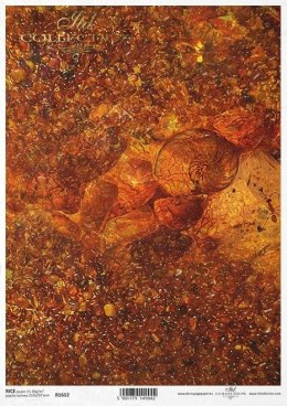 Rice paper - Ambers, small pebbles, pressed ammonite