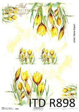 Rice paper flowers - crocus