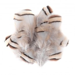 PHEASANT FEATHER 5-12 CM, 15 PCS