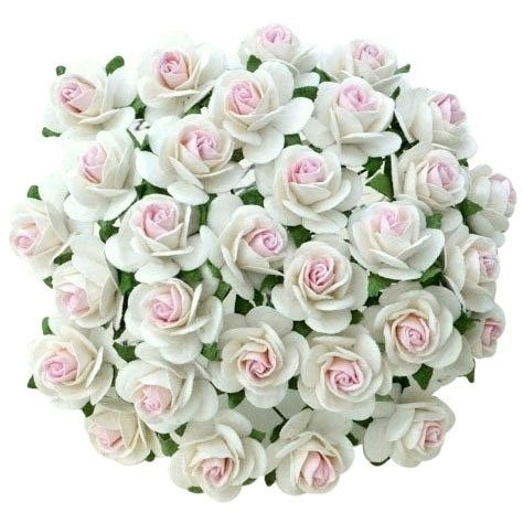 2-TONE WHITE WITH BABY PINK CENTRE MULBERRY PAPER OPEN ROSES - 15 mm