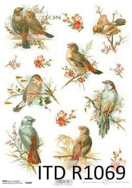 Rice paper - birds and flowers