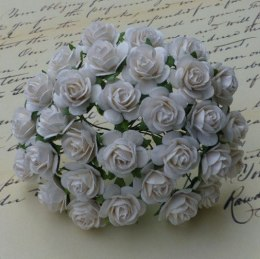 Mullberry roses - white